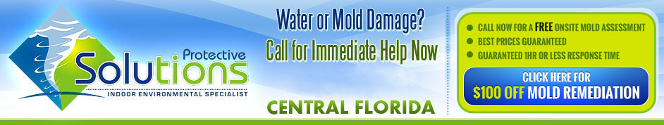 Mold Removal Orlando, FL | Mold Remediation &amp; Mold Testing 